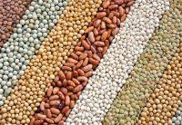 dried-beans
