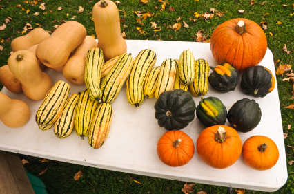 Winter Squashes are Now Considered Neutral